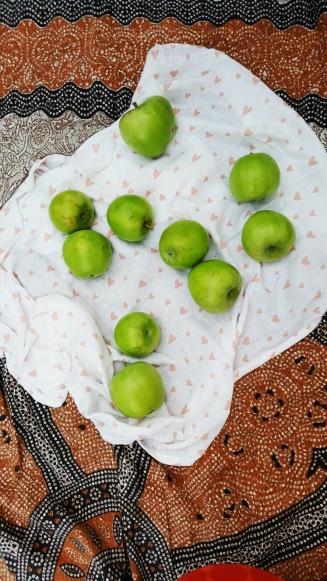 Picknick mit Äpfeln aus dem Garten.jpg