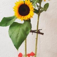 Vom vertrauensvollen Sonnenblumen-Bauern & Upcycling aus Zweigen - {Teil II} Sonnenblumen-Deko